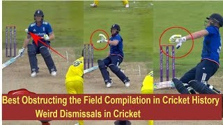 Best Obstructing the Field Compilation in Cricket History ●► Weird Dismissals in Cricket