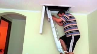 Чердачная лестница(, 2013-08-25T11:42:13.000Z)