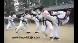 Hapkido Kombat