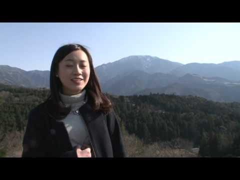 「Feel Gifu Japan」〜Gifu – Historic Towns and World Heritage Sites