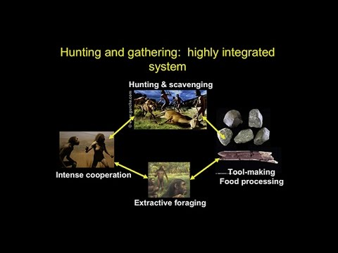 CARTA: Origins of Genus Homo – Daniel Lieberman: Adaptive Shifts Accompanying the Origin of Homo