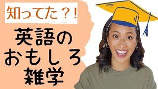 思わず『へぇ〜』ってなる英語のおもしろ雑学トップ10