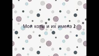 Мои коты и их имена 2)))