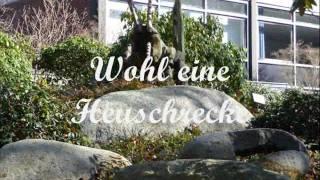 Malente-Gremsmühlen- Holsteinische Schweiz.wmv