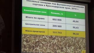 видео Защита зерновых колосовых культур от болезней