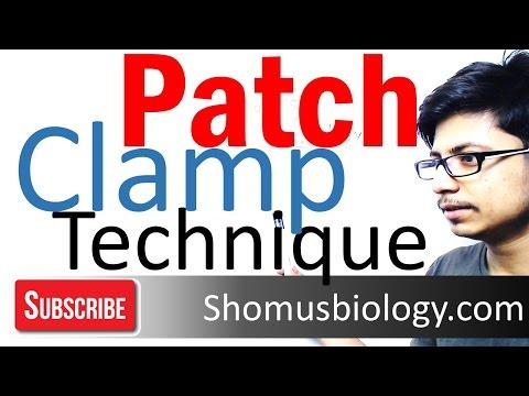Patch Clamp Technique Method | Electrophysiology Technique