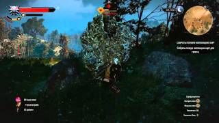 The Witcher 3 earth Elemental. Long hard fight