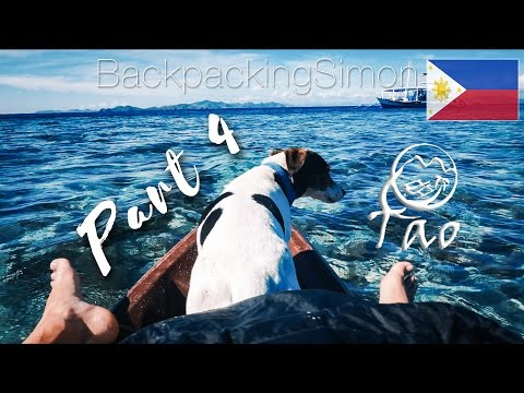 HUND AN BORD TAO PHILIPPINES PART 4 PALAWAN VLOG | #313