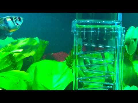 Dennerle CO2 Flipper - реактор СО2