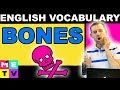 Names of Bones in English - Funny Bone?
