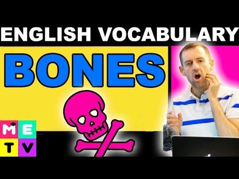 Names of Bones in English - Funny Bone? - YouTube