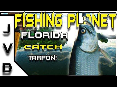 Fishing Planet Gameplay   Ep 23   Catch Tarpon!   Florida
