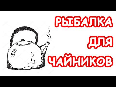 Видеоурок по ловле щуки
