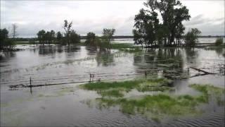 Leftover Salmon - River