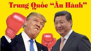 """90% chưa hiểu Lý do Trump lại thích """"Hành"""" Trung Quốc"""