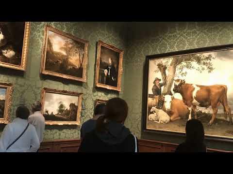 Mauritshuis Museum  - The Hague