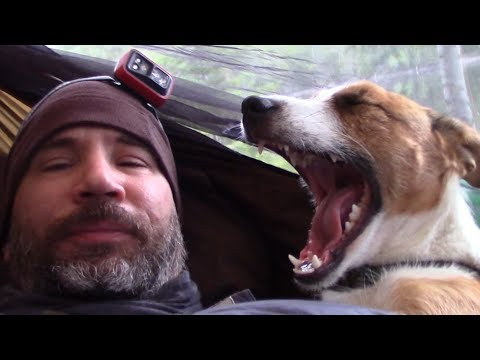 2 Night Solo Canoe Trip with Jack Russell Pup, Hammock 'n Hail