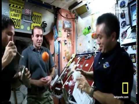 Living in Space: Fresh Fruit