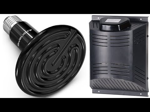 5 Best Dog House Heater - Dog House Heater Reviews 2020