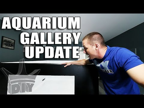 Aquarium gallery update