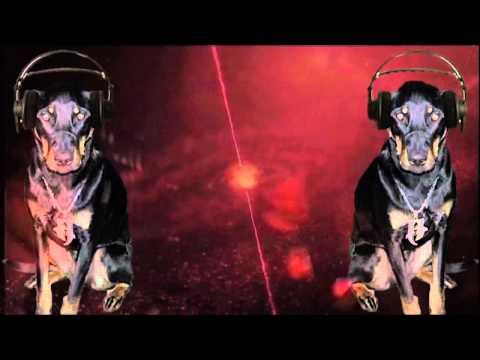 Incubus - Nebula *Live* (Mr. Sweater Remix)