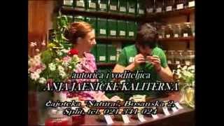 Tea House Natura - Gostovanje, Toše Proeski