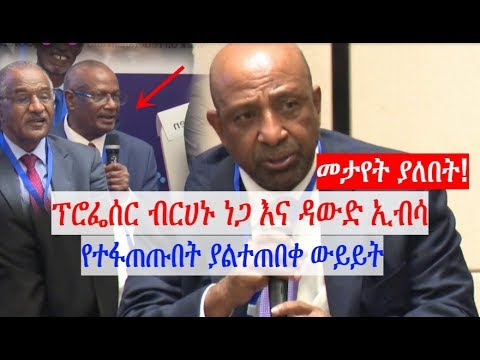 Prof. Brhanu Nega and Dawud Ebsa on a discussion to save the nation