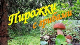 Пирожки с грибами. Видео рецепты от бабки Борисовны.