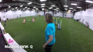 Miniature Bull Terrier Club Of America Akc Agility Trial, June 6 & 7, 2015