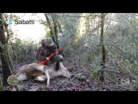 Deer Hunter sito di incontri