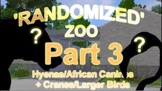 Hyenas/African Dogs + Cranes/Larger Birds #3 -