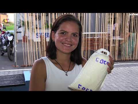 Modo de fazer a farinha de Cruzeiro do Sul