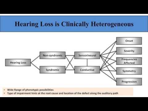 Hela Azaiez - Deafness in the Genomic Era: Discoveries, Challenges and Opportunities