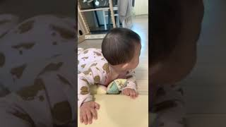 아기있는 집에 로봇청소기 두지 마세요