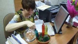видео Что подарить коллеге на день рождения. Идеи лучших презентов