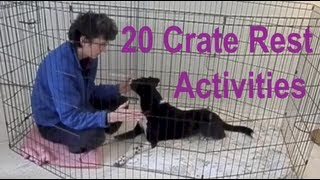 Crate Rest Activities For Dogs After Back, Hip, Leg Injuries, Acl Or Tplo, Heartworm Treatmentetc