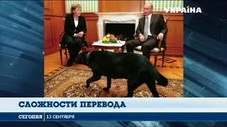 """Немецкое издание """"Фокус"""" назвало Владимира Путина """"собакой"""""""