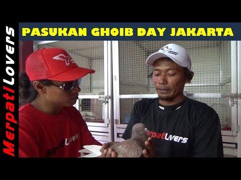 ROOM TOUR Tim Ghoib Day Jakarta