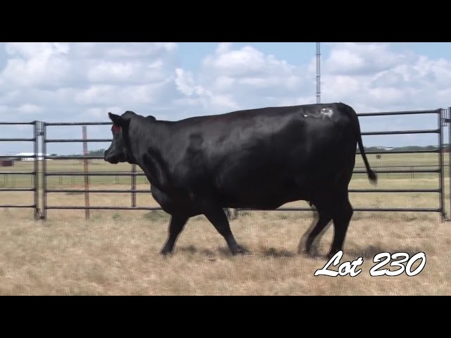 Pollard Farms Lot 230