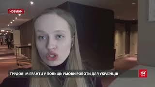 Скільки українців офіційно працевлаштувались у Поль...