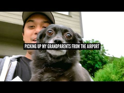 my-grandma-can't-survive-without-her-dog!-(my-grandpa-doesn't-care!!)