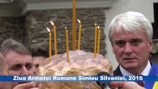 Ziua Armatei Romane , Simleu Silvaniei, 2016