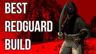 The Mercenary - Best Redguard Build - Skyrim Builds