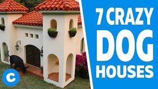 7 Extreme Dog Houses