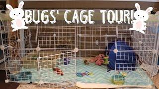 Rabbit Cage Tour | March 2015