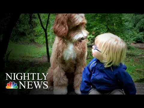 Oregon Foster Child's Friendship With Dog Is Viral Internet Sensation | NBC Nightly News