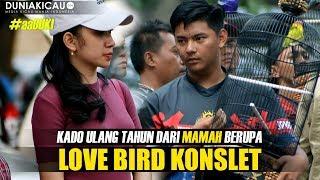Download lagu Kado Ulang Tahun Dari MAMAH Berupa Love Bird KONSLET