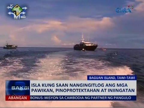 Saksi: Isla sa Tawi-Tawi kung saan nangingitlog ang mga pawikan, pinoprotektahan at iniingatan