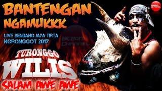 Turonggo Wilis Terbaru Bantengan Ngamuk Liar Ganas Live Sendang Jaya Tirta Ngronggot 2017