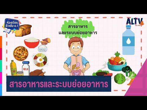 วิทยาศาสตร์ : สารอาหารและระบบย่อยอาหาร l ห้องเรียนติวเข้ม ป.6 เข้า ม.1 (17 ก.พ. 64)